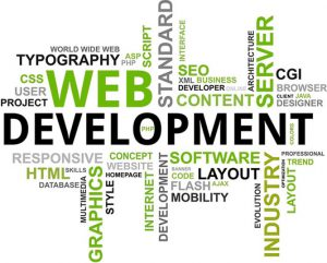 What you need to know about web development companies before hiring one